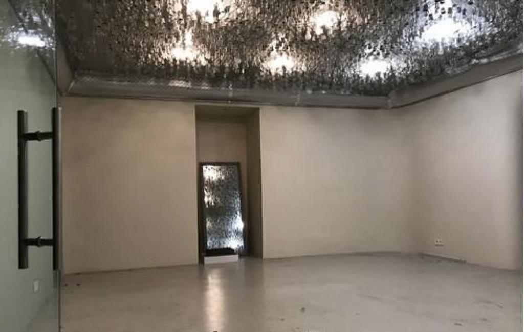 Аренда фасадного нежилого помещения на Заньковецкой - АН Стольный Град фото 1