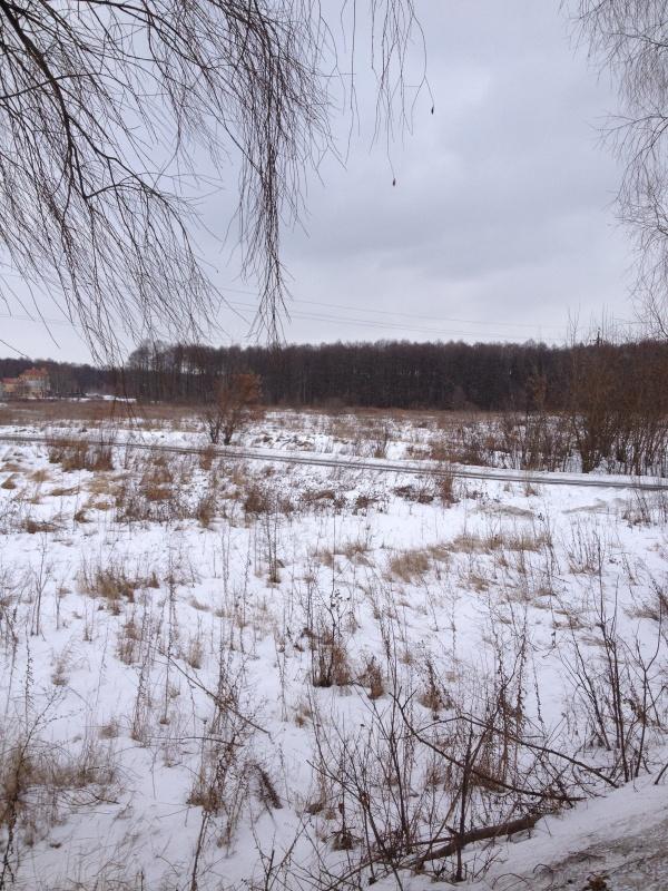 Продажа земельных участков в Пуховке, рядом с Десной - АН Стольный Град фото 3
