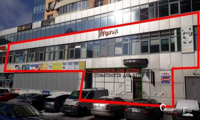Аренда нежилого помещения в на Позняках - АН Стольный Град фото 2