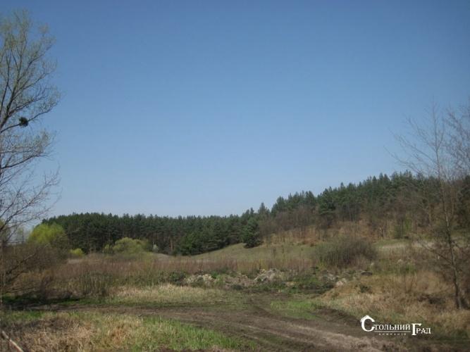 Продажа участка под загородный клуб у леса на берегу озера - АН Стольный Град фото 2