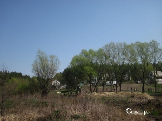 Продажа участка под загородный клуб у леса на берегу озера - АН Стольный Град фото 3