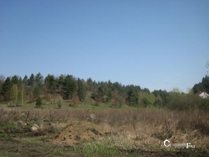 Продажа участка под загородный клуб у леса на берегу озера - АН Стольный Град фото 5
