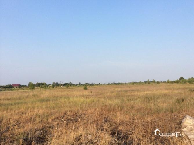 Продажа участка 6.25 га 15 км от Киева - АН Стольный Град фото 2