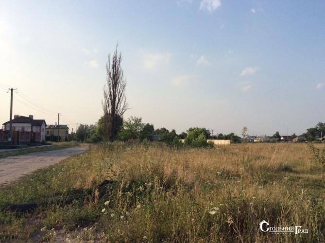 Продажа участка 6.25 га 15 км от Киева - АН Стольный Град фото 3