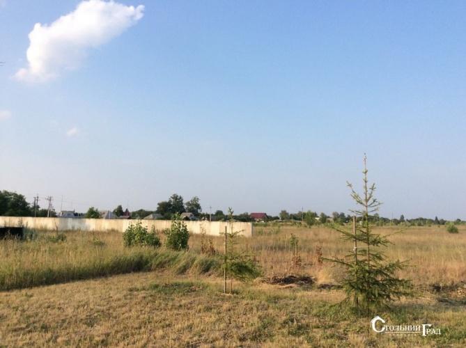 Продажа участка 6.25 га 15 км от Киева - АН Стольный Град фото 6