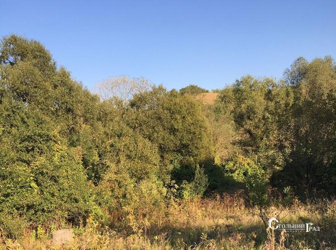 Продажа участка земли с домом-дачей село Черняхов - АН Стольный Град фото 1