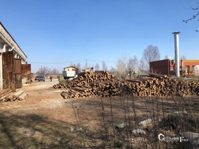 Продаж виробничо-складської бази в Борисполі - АН Стольний Град фото 11