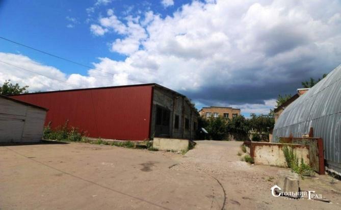 Продам складську базу в Києві, Окружна, Академмістечко - АН Стольний Град фото 3