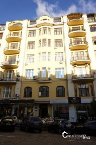 Продам эксклюзивные апартаменты в центре на пл.Льва Толстого - АН Стольный Град фото 46