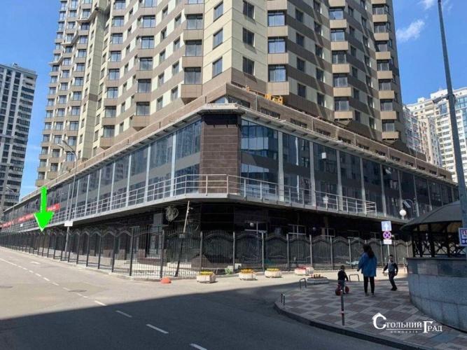 Продажа нежилого помещения на 1 этаже в новом ЖК Дельмар - АН Стольный Град фото 2