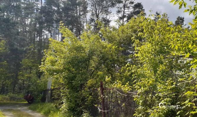 Продаж ділянки 15 соток в Києві в мальовничому місці Хутір Редьки - АН Стольний Град фото 8