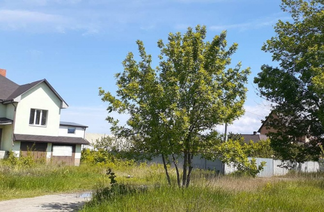 Продаж будинку в Нових Петрівцях 408 кв.м - АН Стольний Град фото 3