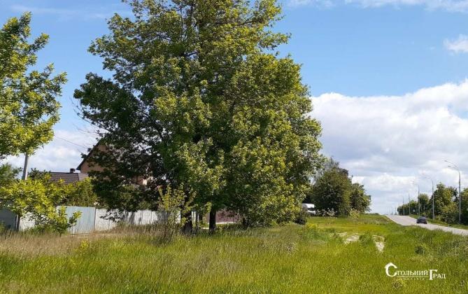 Продаж будинку в Нових Петрівцях 408 кв.м - АН Стольний Град фото 4