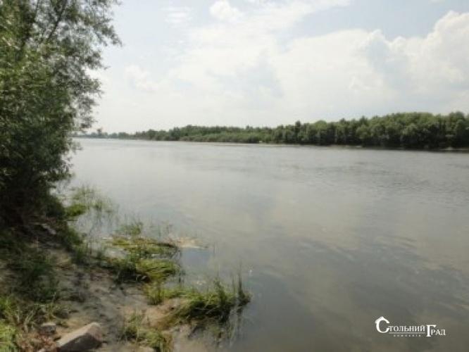 Продам 2 га на березі річки Десна в селі Рожни - АН Стольний Град фото 5