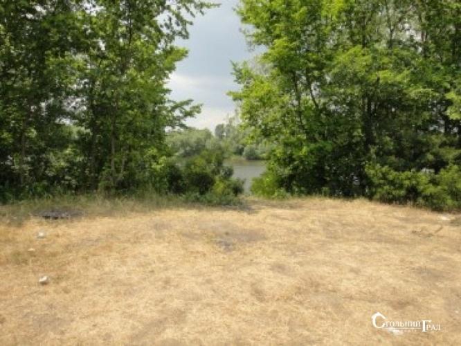 Продам 2 га на березі річки Десна в селі Рожни - АН Стольний Град фото 8