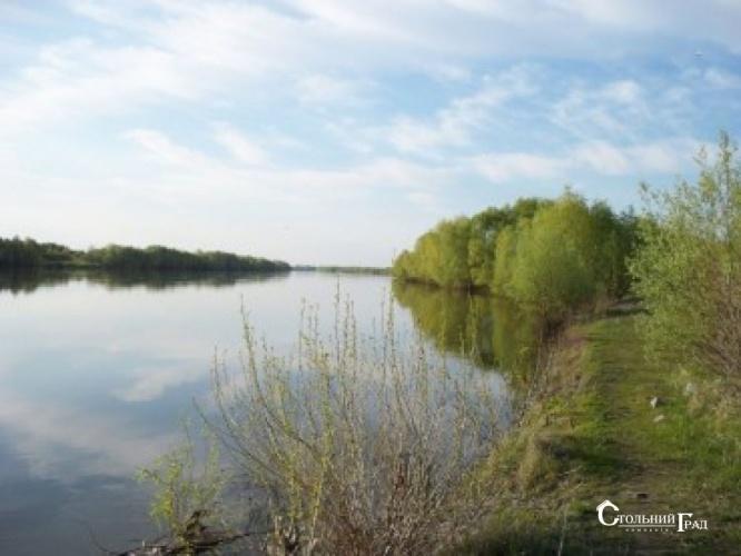 Продам 2 га на березі річки Десна в селі Рожни - АН Стольний Град фото 4