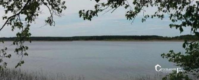 Унікальна ділянка на березі Дніпра в заповідному місці - АН Стольний Град фото 5
