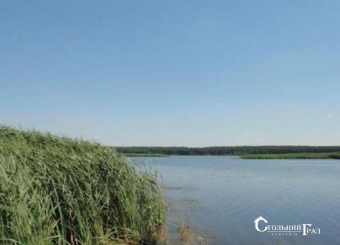 Унікальна ділянка на березі Дніпра в заповідному місці - АН Стольний Град фото 1