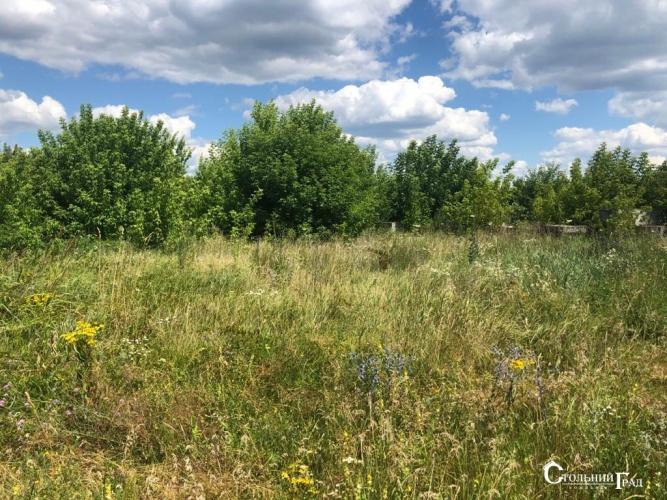 Продажа земельного участка в Гореничах под Киевом - АН Стольный Град фото 4