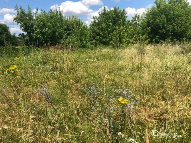Sale of a land plot in Gorenichi near Kiev - Real Estate Stolny Grad photo 5