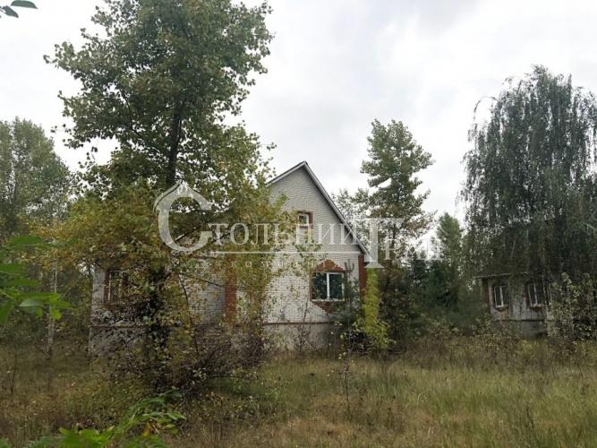 Продам ділянку 1 га на березі Дніпра - АН Стольний Град фото 11