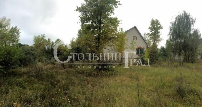 Продам ділянку 1 га на березі Дніпра - АН Стольний Град фото 14