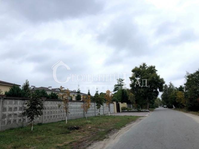 Продам ділянку 1 га на березі Дніпра - АН Стольний Град фото 15