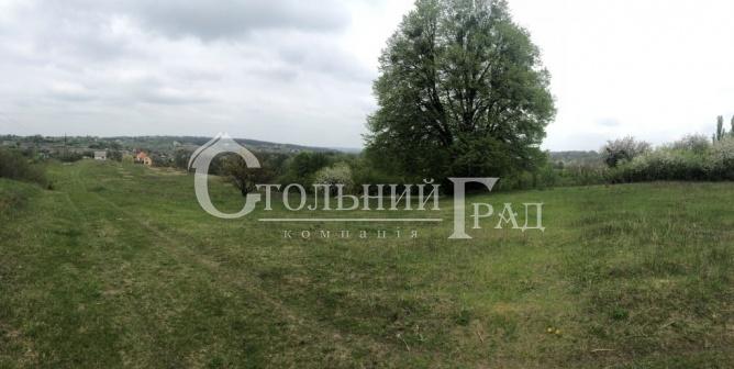 Продажа живописного участка под Киевом в Рославичах - АН Стольный Град фото 5