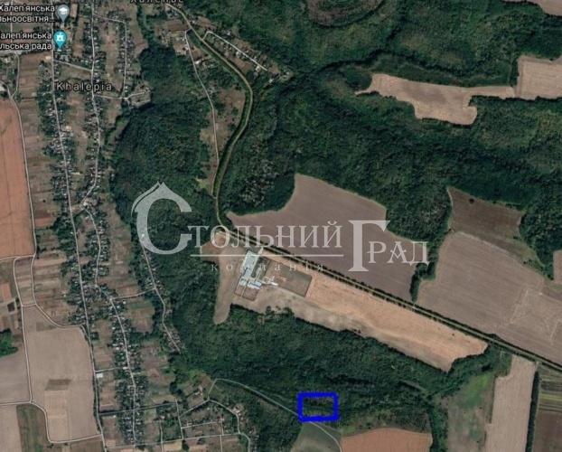 Продаж землі під садівництво в красивому місці Халеп'я - АН Стольний Град фото 1