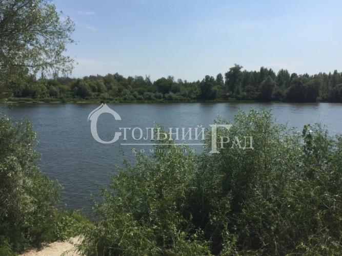 Продам 2 га на березі річки Десна в селі Рожни - АН Стольний Град фото 1