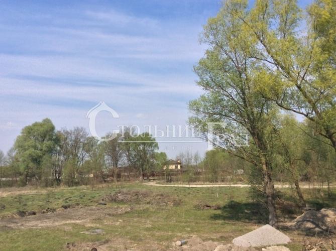Продам 2 га на березі річки Десна в селі Рожни - АН Стольний Град фото 2