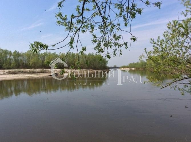 Продам 2 га на березі річки Десна в селі Рожни - АН Стольний Град фото 3