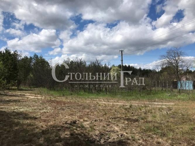 Продаж землі в мисливських угіддях в Вишгородському районі - АН Стольний Град фото 2