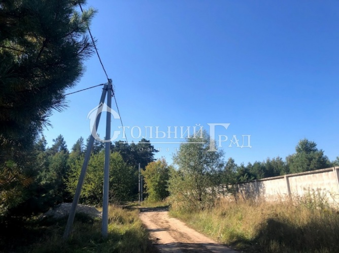 Продам участок в лесу под Броварами - АН Стольный Град фото 10