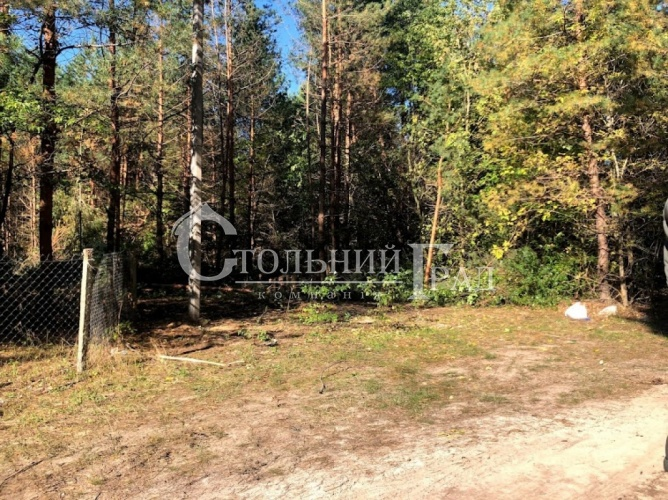 Продам участок в лесу под Броварами - АН Стольный Град фото 14