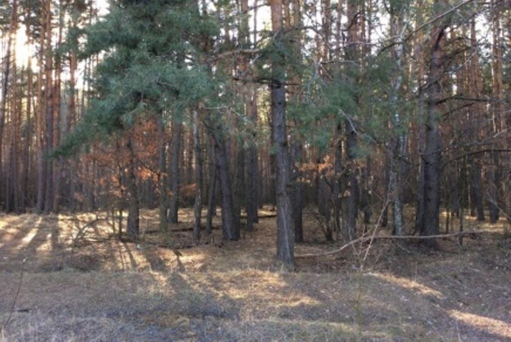 Продажа земельного участка под застройку в Лютеже - АН Стольный Град фото 6